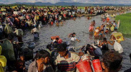 अगर हमको खाना दे दिया जाता तो हम नहीं मरते ,रोहांग्याई मुसलमानों का दर्द