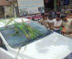 टूटी सड़क को लेकर सपाइयों का हल्ला बोल, घोसी विधायक के गाड़ी पर धान के पौधे फेंक किया प्रदर्शन